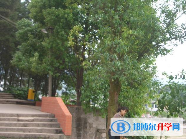 四川省开江县讲治中学学费