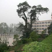 重庆市大足第三中学校