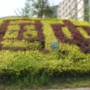 重庆市万州国本中学