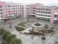重庆合川太和中学地址在哪里