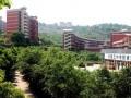 重庆涪陵第五中学校招生办联系电话