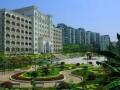 重庆云阳中学地址在哪里