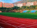 重庆中山外国语学校招生办联系电话