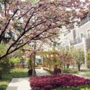上海建平中学国际课程教学中心