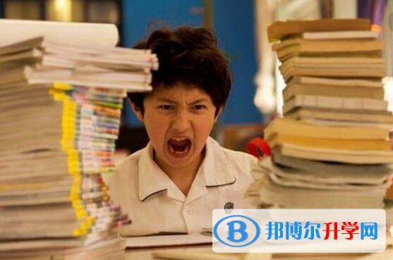 重庆今年中考难吗