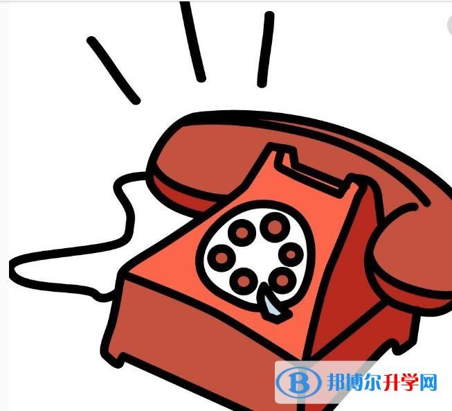 重庆查询中考成绩的热线电话