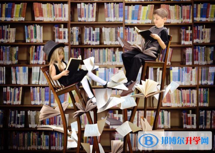 重庆中考课外阅读