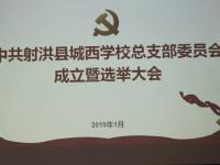 加强组织建设 落实党的领导