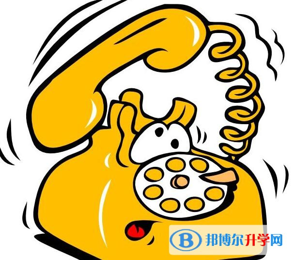 绵阳查询中考成绩的热线电话