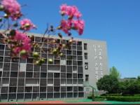 成都盐道街中学外语学校地址在哪里