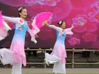 城西学校:弘扬中华文化 传承孝德精神