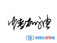 石家庄查询中考成绩上哪个网站