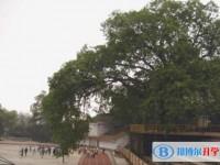 重庆长生桥中学校2020年招生计划