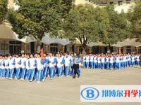 绵阳第二中学网站网址