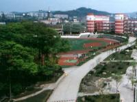四川宜宾第六中学2020年录取分数线