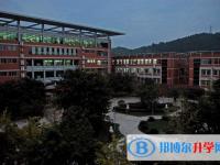 德阳外国语学校2020年招生办联系电话
