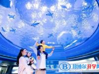 2020年云南中考准考证信息