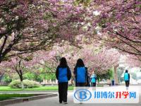 青白江姚渡中学2020年招生代码