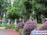 四川沐川中学2020年招生代码