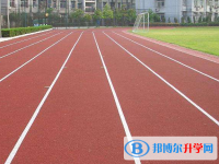 四川金阳中学2020年招生代码