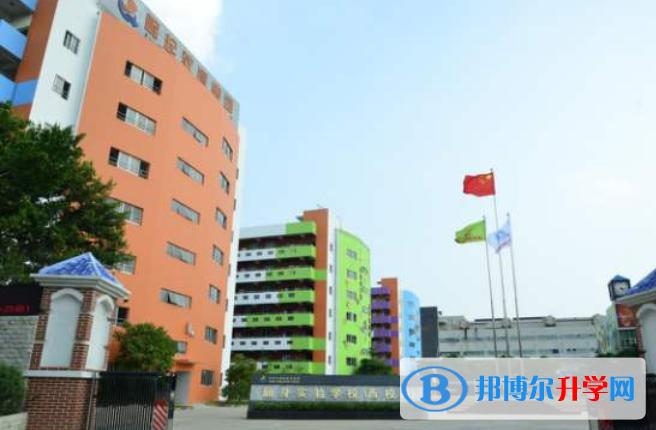 青之藤国际学校网站网址
