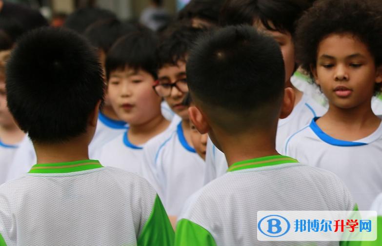深圳韩国国际学校2020年招生计划