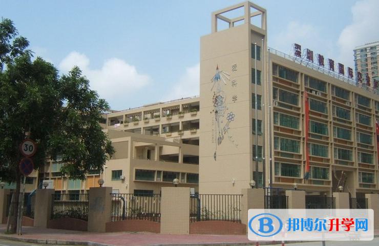 深圳国际交流学院2020年招生简章