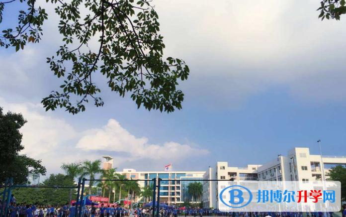 深圳美中学校2020年招生办联系电话