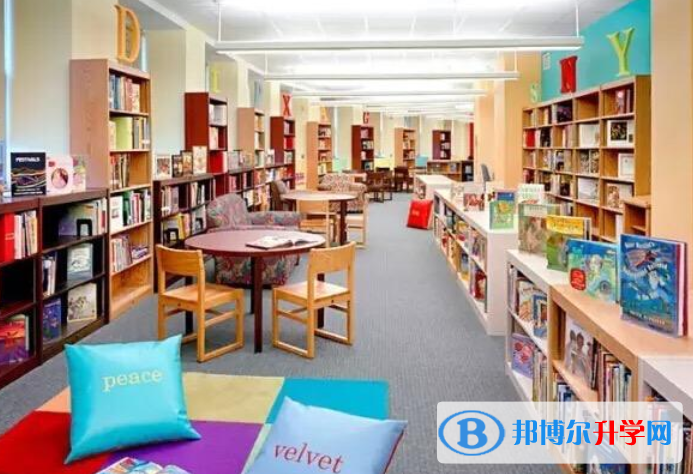 深圳博纳学校网站网址