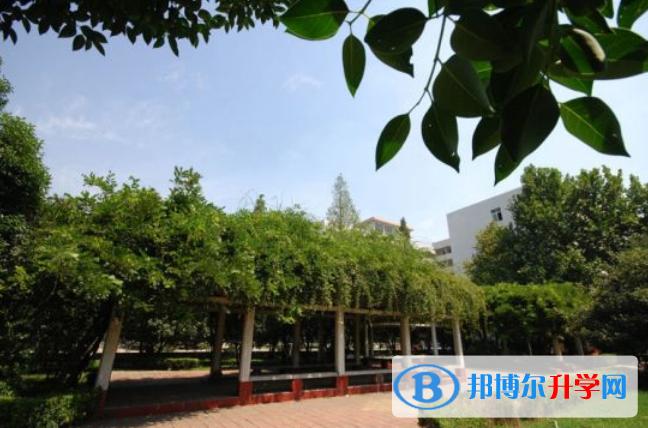 广州英国国际学校网站网址