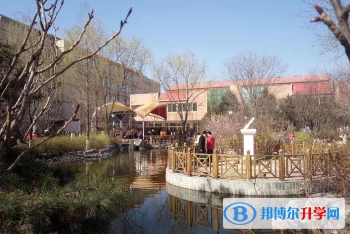 北京师达中学国际班网站网址