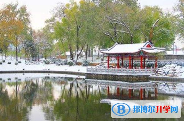 北京一零一中学国际部2021年招生办联系电话