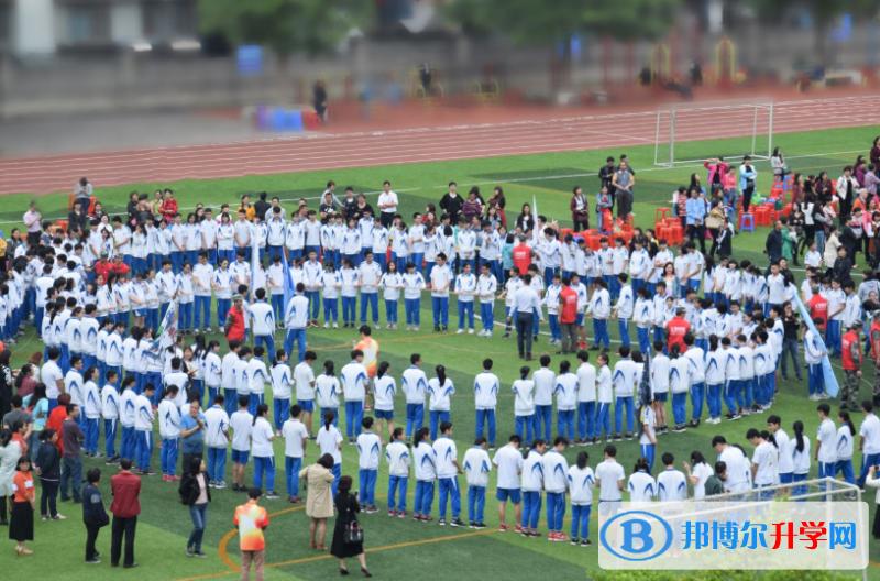 广州第二外国语学校网站网址