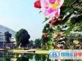 北京剑桥国际学校2021年招生办联系电话