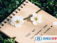 2021年广元中考志愿