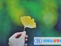 2021年广元中考志愿官网