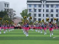 四川省开江县任市中学2021年招生代码