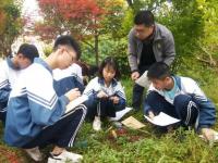 大竹县庙坝中学2021年招生录取分数线