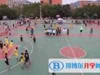 四川省泸县第五中学2021年学费、收费多少