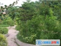 四川省开江县讲治中学2021年招生办联系电话