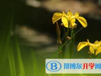 2021年秦皇岛中考网络服务平台