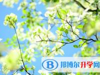 2021年秦皇岛中考网登录