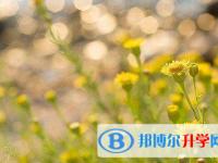 秦皇岛2021年近年中考重点线