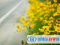 乐山2022年近年中考重点线