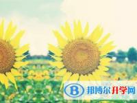 乐山2022年填中考志愿