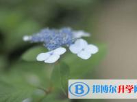 乐山2022年中考报名系统