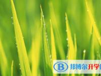 乐山2022年中考查询网