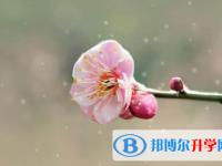 乐山2022年中考成绩出来了吗