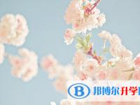 乐山2022年中考建档线