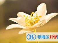 乐山2022年中考录取